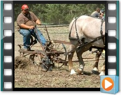 Rae Valley Heritage Association Video - Plowing With a Team of Four Horses